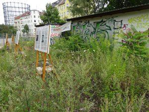 Foto des Geländes mit Ausstellungstafeln, das Gebäude wuchert zu